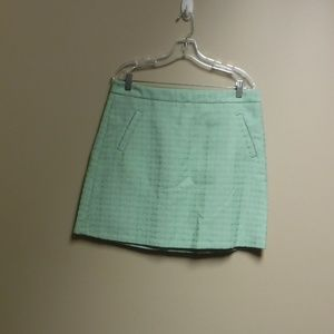 The Limited Mint Green Skirt Size 12 NWT